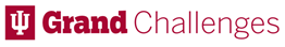 The Grand Challenges Logo